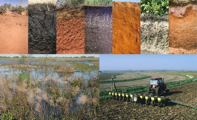 Image gallery soil science for Introduction of soil